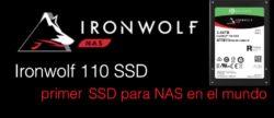 ironwolf 110 ssd seagate